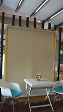 3.0m W x 2.5m D Cisic Outdoor Patio/Pergola Wire Guide Roller Blind Awning Ivory