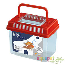 Geo Plastic Tank Small Mixed Colours 18.2x 11.5x 14cm