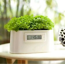 NEW Mini Power Live Plant Eco DIY Clock Garden Science Herb Self Power GIFT IDEA