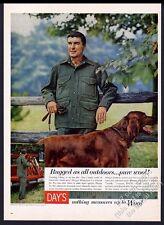 1959 Irish Setter nice color photo Day's Alaska Tuxedo jacket vintage print ad