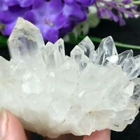 227g NATURAL CLEAR WHITE QUARTZ CRYSTAL Cluster flower MINERAL SPECIMEN L872