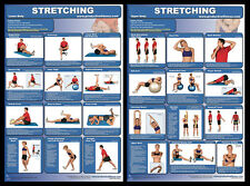 STRETCHING EXERCISES WORKOUT Professional Fitness Gym Wall Charts 2 POSTER SET