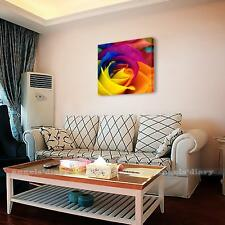 US Stock Framed HD Canvas Print Abstract Wall Art Painting Picture-Colorful Rose