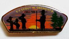 Hiawatha Seaway Council (NY) 2003 FOS OBEDIENT CSP Shaped Hat Pin  BSA
