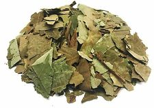 Avocado Leaves Herbal Infusion Tea (25g) Hojas de Aguacate Hierba te