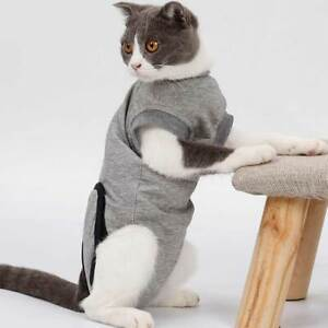 Surgery Pet Recovery Suit Rehabilitation For Cats Abdominal Wounds Skin Diseases