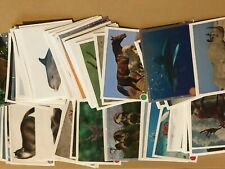 More details for full set of animals 2020 sticker collection panini 276 sticker set