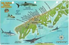 Isla Holbox Mexico Map & Reef Creatures Guide Laminated Fish Card by Franko Maps
