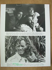 1980 FILM STILL PRESS PHOTO - WHEN TIME RAN OUT - PAUL NEWMAN - WILLIAM HOLDEN