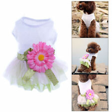 Lace Female Clothing & Shoes for Dogs