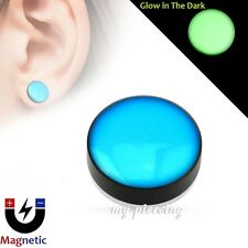 Magnetic Glow in the Dark Fake Plug Epoxy Dome Top Black Acrylic Ear Cheater 2PC