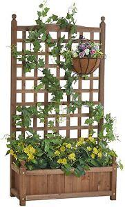 Raised Garden Bed with Trellis Garden Box for Vine Planter for Indoor Outdoor