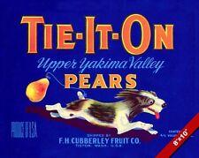 VINTAGE YAKIMA PEARS WASHINGTON STATE FRUIT POSTER FOOD ART REAL CANVAS PRINT