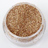 Holographic Champagne Fine Dust Glitter Nail Art Eye Shadow buy 3 + 3 free