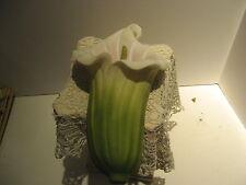 Ibis & Orchid Design