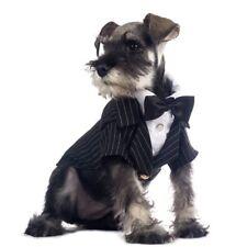 NEW DoggyDolly Formal Wedding Black Pinstripe Tuxedo Suit w/Silk Tie - Small
