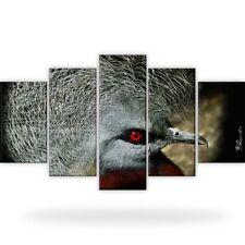 Kronentaube Vogel Tiere Bild Bilder Wandbild Kunstdruck  5 Teilig Xxl