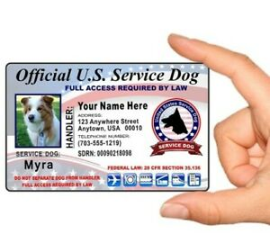 Service dog pet identification card customize info and picture send info