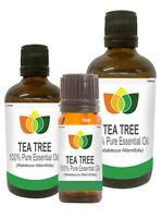 Tea Tree Pure Essential Oil Natural Authentic Maleleuca Alternifoli Aromatherapy