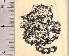Dangling Raccoon Rubber Stamp, Climbing Tree J2708 WM