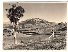 Mount Hikurangi - New Zealand Photograph c1930s