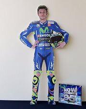 Valentino Rossi Display Stand NEW 2017 Standee Yamaha MotoGP Monster Champ