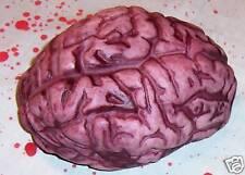 Bloody Brain Halloween Prop Decoration Body Parts Gag NIP