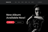 Remaster - Wordpress Website (with Demo Content) for Musicians, DJ and Artists