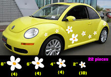 VW Beetle Flowers, Flowers for Beetle, Punch buggy Flowers, Punch bug daisies