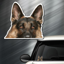 (1) German Shepard DOG Peeper Sticker Window Peep Decal Car Auto Puppy AKC NEW