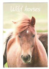 WILD HORSE Birthday Birthday Greeting Card w/ Envelope Humane Society G7