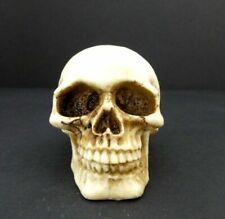 Skull Head Figurine Small Celtic Knot Halloween Decoration Statue 2