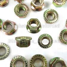 (15) M10-1.25 Thread J.I.S Serrated Hex Flange Nuts Zinc Yellow 19mm Flange O.D.