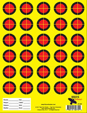 HIGH QUALITY SHOOTING TARGETS - Perfect for .22 Rifle or Handgun Challenge-T008