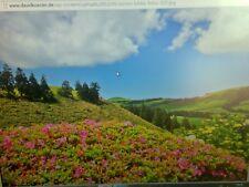 TFT Monitor , Bildschirm ,PC Display  15 Zoll