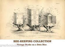 Les abeilles Apiculture la production de miel rucher 35 livres vintage sur un Data Disc