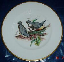 Superb Coalport Large Collectors Plate NUTHATCH - BRITISH BIRD Series