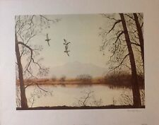 WORKING THE LAKE EDGE by Bruce Dines *NEW* and *NEVER FRAMED*  1903