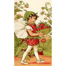 Michael Miller Strawberry Fairy Panel Multi Cotton Quilting Fabric
