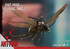 HOT TOYS ANT MAN ON FLYING ANT
