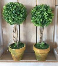 Unbranded Potted Topiary Dried & Artificial Flowers