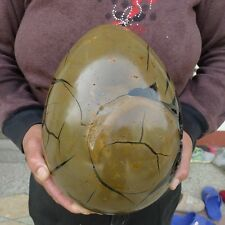 19LB Large Dragon Septarian Crystal Sphere Geode Egg Healing Madagascar