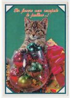 Christmas Vintage Photo Card Baby Cat Glasses Balls Glass Humorous