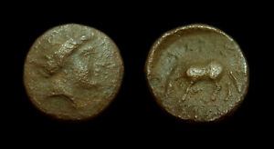 AE14 Larissa - Thessaly (Nymph / Horse)