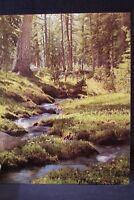 Vintage MEAD Wild Wonderful Creek Picture Portfolio School Folder School 3-Ring