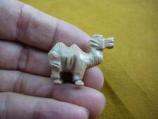 (Y-CAM-12) Tan CAMEL camels desert dromedary SOAPSTONE FIGURINE gemstone carving