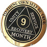 9 Month AA Medallion Elegant Black Gold & Silver Plated Sobriety Chip Coin