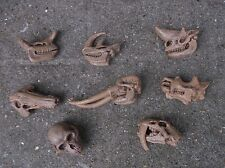 Safari Ltd toob toys - small replica 8 PREHISTORIC MAMMAL SKULLS  resource