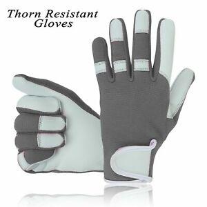 Mens Leather Gardening Gloves Thorn Resistant Multipurpose Proof Garden work UK