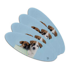 Jack Russell Terrier Puppies Dogs Gift Box Oval Nail File Emery Board 4 Pack